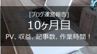 ブログ 運営報告 10ヵ月 画像