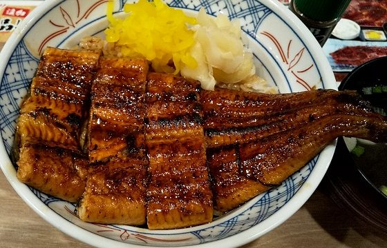 【優待ご飯】SFPホールディングス (3198)の磯丸水産でうな丼(お吸い物付き)を食べてきました♪
