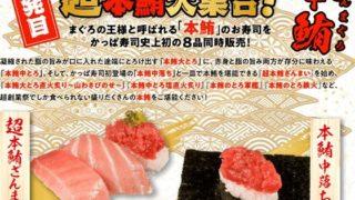 【節約】【お得】かっぱ寿司で超創業祭!一発目は超本マグロ大集合!!!
