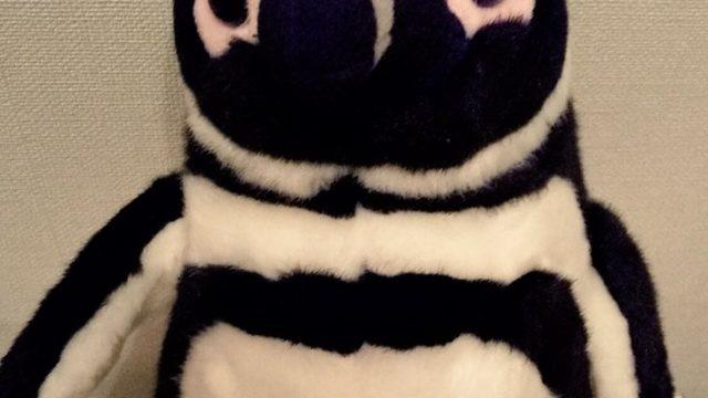 【株主優待】オリックス (8591)から2020年3月権利のふるさと優待カタログBコースで選んだ「マゼランペンギンぬいぐるみM」が到着しました!