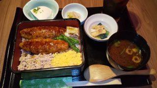 【優待ご飯】SFPホールディングス (3198)の「鳥良」で「鶏つくね焼き重御膳」を食べてきました♪ Go To Eat利用♪ハピタス経由で!
