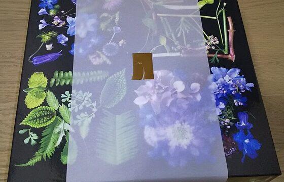 【株主優待】岩塚製菓 (2221)から2021年3月権利の自社製品が到着!カレー煎餅、おかき、胡麻せんべいなどが入っています!
