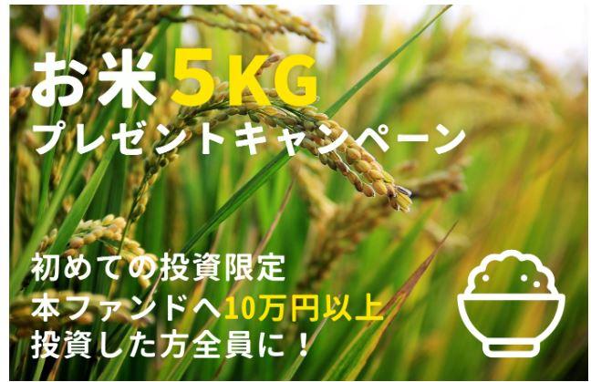 【資産運用】話題の「WARASHIBE」で魅力的なファンドが!?初めての投資でお米5kgがもらえます!6/25 19:00~から応募開始!
