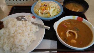【優待ご飯】松屋フーズホールディングス (9887)の「松屋」で「海鮮ごろごろシーフードカレー彩り生野菜セット(大盛り)」を持ち帰りしました♪